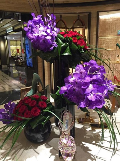 Harrods shoe heaven vanda and rose domes